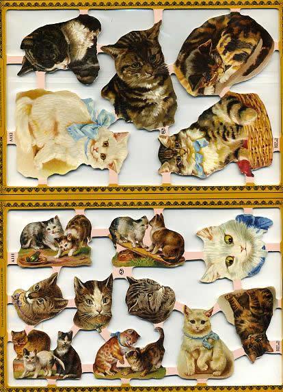 1 Bogen Poesiebilder - 30 x 23 cm Katze,  Tiere,  Poesiebilder,  Katze
