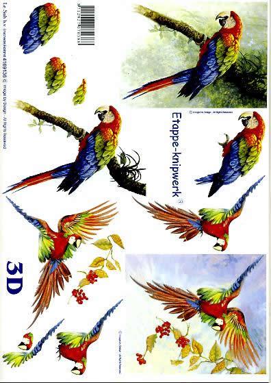 3D Bogen Papagei - Format A4,  Tiere - Vögel,  Le Suh,  3D Bogen,  Papagei,  Vögel,  Vogel