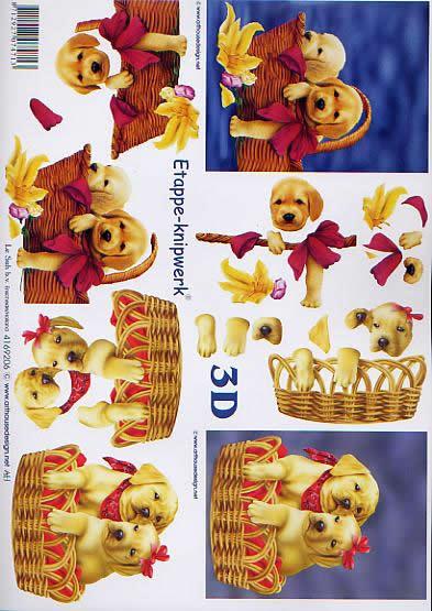 3D Bogen Hündchen - Format A4,  Tiere - Hunde,  Le Suh,  3D Bogen,  Hündchen,  hund