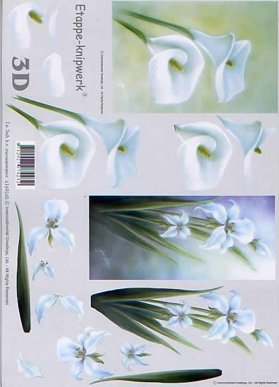 3D Bogen Aronstab - Format A4