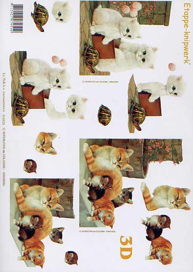 3D Bogen Kätzchen - Kätzchen - Format A4,  Tiere - Katzen,  Le Suh,  3D Bogen,  Kätzchen - Kätzchen
