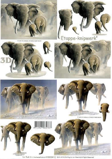 3D Bogen Elefanten - Format A4,  Tiere - Elefanten,  Le Suh,  3D Bogen,  Elefanten in der Wüste