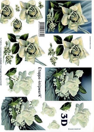 3D Bogen Weiße Rosen - Format A4,  Blumen - Rosen,  Le Suh,  3D Bogen,  Weiße Rosen