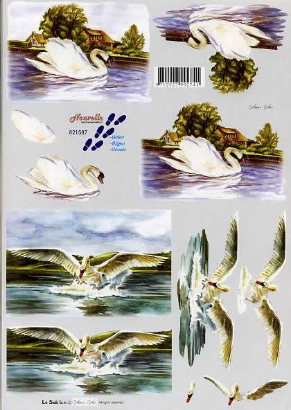3D Bogen Schwäne - Format A4