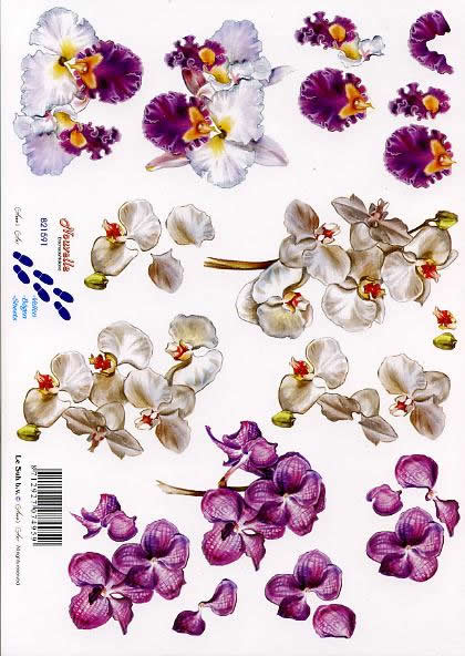 3D Bogen Ochidee - Format A4,  Blumen -  Sonstige,  Le Suh,  3D Bogen,  Ochidee