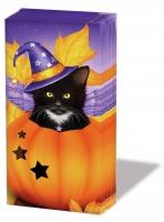 handkerchiefs Halloween Cat