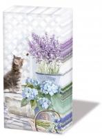 handkerchiefs Kitten