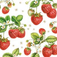 Cocktail Servietten Strawberry Plant