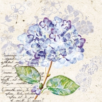 Cocktail napkins Flou d´Hortensia Purple