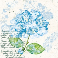 Cocktail napkins Flou d´Hortensia Blue
