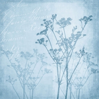 Cocktail napkins Floral Harmony Blue