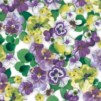 Cocktail napkins Pansy All Over Purple