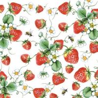 Cocktail napkins  Strawberries All Over White