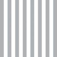 Lunch napkins Stripes Silver