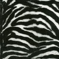 Lunch napkins ZEBRA BLACK