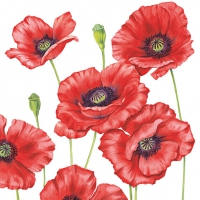 Lunch Servietten ROMANTIC POPPY