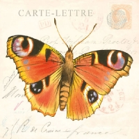 Lunch Servietten BUTTERFLY CARDS