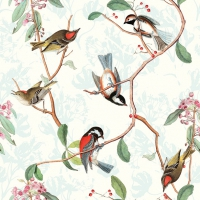Lunch napkins Birdsong