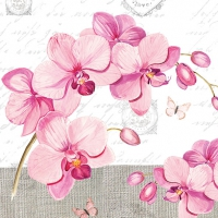 Lunch napkins Orchids With Love
