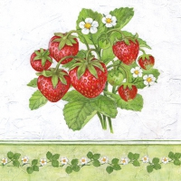 Lunch napkins Season Fruit