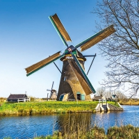 Lunch napkins Dutch Windmill