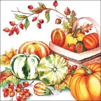 Lunch napkins Pumpkin & Rosehips