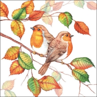 Lunch napkins Robins In Autumn