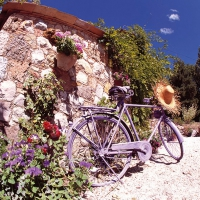 Serviettes lunch Bike in Provence