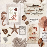 Serviettes lunch Sepia Sea Cream