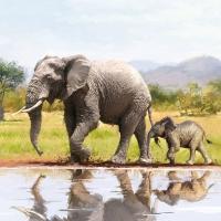 Lunch Servietten Elephant