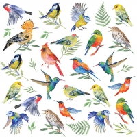 Lunch Servietten Birds Votes