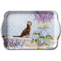 tray - Kitten