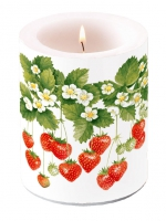 candele CANDLE SUMMER FRUITS