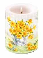 Candles NARCISSUS