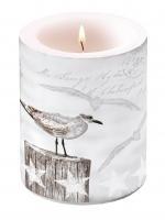 Kerze Seagulls