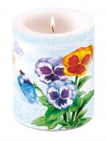 Kerze Aquarell Pansy