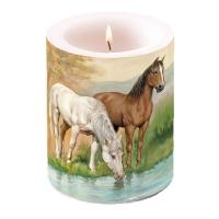 Kerze Horses