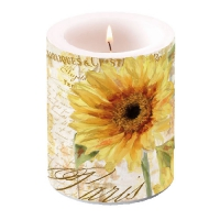 Candles Candle Big Tournesol