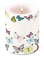 Candles Candle Big Butterfly