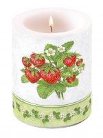 candele Candle Big Season Fruit
