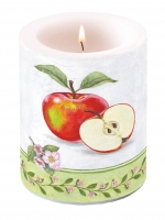 Candles Candle Big Apple Blossom