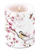 Dekorkerze Bird & Blossom White