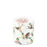 Candles Birdsong