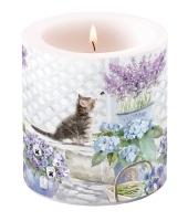 Candles small Kitten