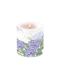 Candles Hortensia