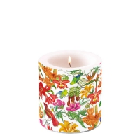 Candles small Paradise Birds White