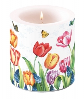 Candles Tulips & Muscari