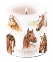 Candles small Horse Range