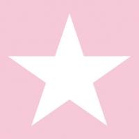 Serwetki 25x25 cm - Gwiezdna róża