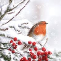 Servilletas Cocktail Robin In Snow